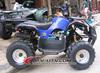 new 50CC,2 stroke Mini ATV,Kids ATV,Mini Quads,50cc