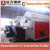 10 ton coal steam boiler