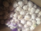 garlic from china for 2014 new