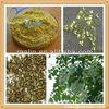 High quality Quercetin powder, Natural quercetin dihydrate