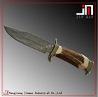 Hunting Knife With Damascus Steel Blade Horn Bone Handle