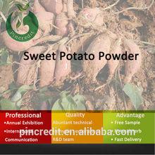 vietnam purple sweet potato,sweet potato extract, sweet potato powder