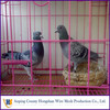 Anping Hongshan welded wire mesh pigeon coops from alibaba China