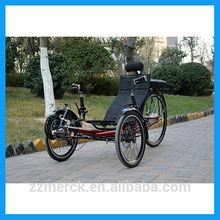 e-bike motor bike with three wheels