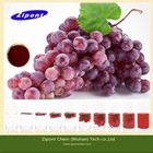 Plant Extract Edible Red Color Grape Skin Coloring