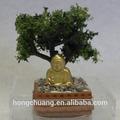 Casa de bonecas em miniatura de árvores bonsai em marrom pote com cascalho e figura de buda,