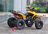 Water cooled Spy EEC 250CC Racing ATV 250CC Quad ATV