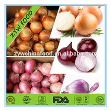 Hot Sale Chinese Natural Fresh Onion / China Organic Fresh Red Onion / Wholesale Yellow Onion Price