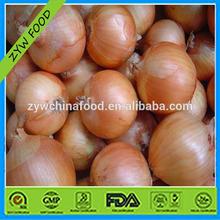 Hot Sale Chinese Natural Fresh Onion / China Organic Fresh Red Onion Bulk / Wholesale Yellow Onion Price