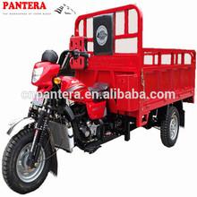 PT250ZH-8 High Quality Popular In Afirca Motorized Type 3 Wheel Motocicleta