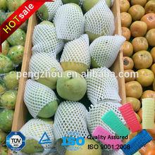 China Manufacturer EPE Foam Fruit Packaging Net Wholesale