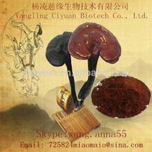 Ganoderma lucidum mushroom polysaccharides 10%,20%,30%,40%,50%