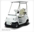 Carrito de golf de un sólo asiento, carritos de golf eléctricos y carrito eléctrico de golf, carro buggy y carro eléctrico WS-GL1 en venta