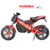 PT-E001 Ligth Weight Well Configuration Optional Color High Quality Fashion Electric Motorcyle