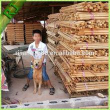 Hot sale natural strong eucalyptus logs wood sticks price