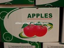 New Price Sweet Fresh Red Fuji Apple