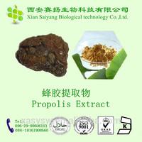 Organic Bee Propolis Extract /brazil green propolis extract/ propolis extract powder