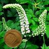 100% Natural Black Cohosh Powder/Black Cohosh Extract