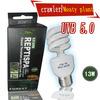 Reptile lamp UVB5.0 13W Energy-saving lamps