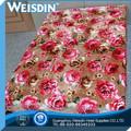 non tessuto china wholesale lana visone dip dye paesaggio divano coperta plaid
