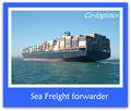 Flete marítimo competitivo y hong kong a moscú de---- rachel de skype: colsales15