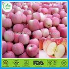 fresh fuji apple/Chinese red apple /sweet apple