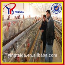 best price chicken pens (ISO9001 factory)