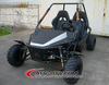 HOT SALE 2 Seats 1100cc dune buggy/road buggy/go kart with EPA