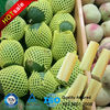 Plastic Netting For Fruits Packing wholesales