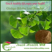 GMP, KOSHER, Herbal Powder Ginkgo Biloba Extract
