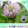 High quality Red clover extract/P.E powder isoflavone Trifolium pratense powder extract