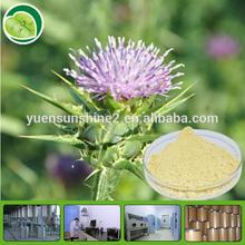 free samples milk thistle extract milk thistle powder