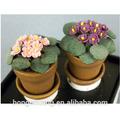 casa de bonecas em miniatura africana roxo e rosa flores vaso de plantas