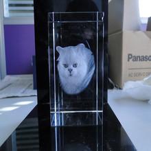 3D Laser Etched Crystal Animal