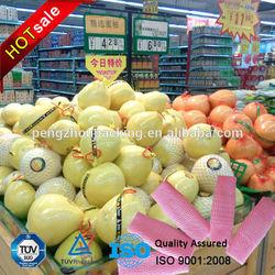 EPE Foam Fruit Packing Net wholesale