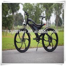 America Europe Japan hot selling mountain electric bike