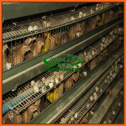 Innaer quail breeding cages for sale
