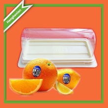 Fruit plastic food tray with cover wholesale