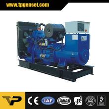 High Efficient 50HZ 220KVA Military Diesel Generating Set Importers