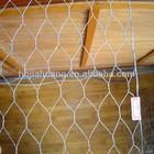 China Anping Hexagonal Mesh/Hexagonal Wire Mesh