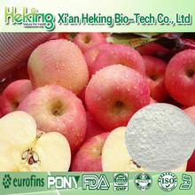 High quality 75% Polyphenols Apple P.E..75% Polyphenols Apple P.E.