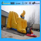 Low price best sell shark inflatable water slide