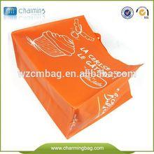 American and European Standard PP Non Woven Fabric Bag