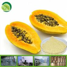 Organic pure natural with hot selling fermented papaya powder
