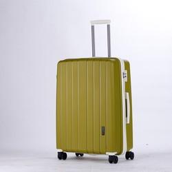 new cartoon characters luggage
