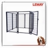 large outdoor wire mesh double dog show cage