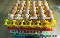 Fabrication en plastique de couleur protéger oeufs,- cartons plateau d'oeufs à couver incubateur de transport en plastique de forme d'oeufs plateau tureing/boîte