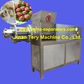 jinan tery tly500 pato máquina de corte feito na china