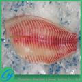 Fuente de alimentación Frozen Tilapia filete de pescado precio