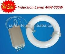 High Quality 5 Years Warranty Sunlaite lvd Induction Light Bulbs For High Bay Street Light Tunnel Light Use